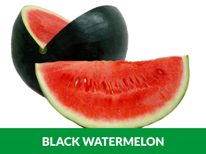 Black Watermelon